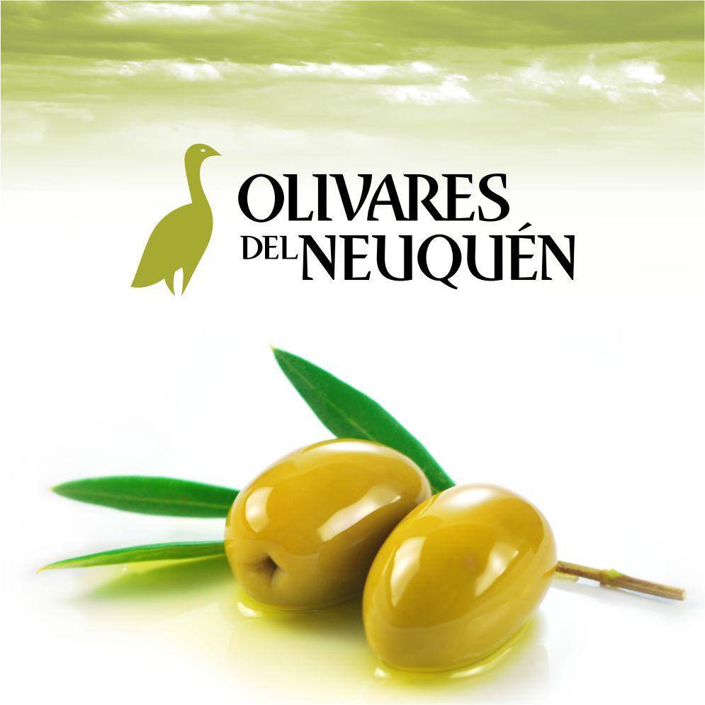 olivares001